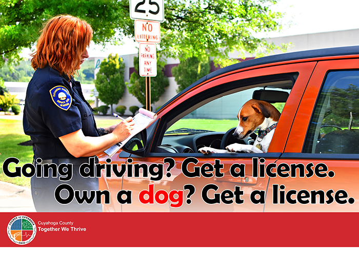 cuyahoga dog license