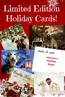 Limited Edition Holiday Cards
