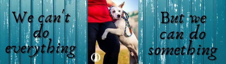 volunteer banner with a dog hugging a person's leg